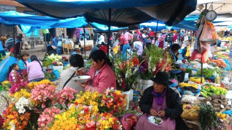 Picture of people in a market with flowers and fruits