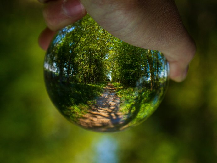 A hand holding a glass ball that brings the background of a forest path into focus