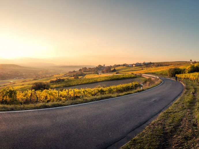picture of a road disappearing around a corner in green countryside at sunrise
