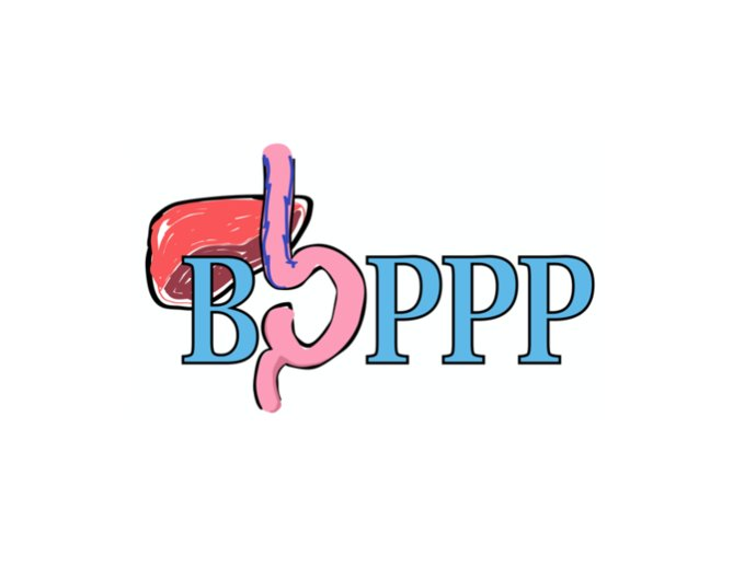 The BOPPP logo - there is a liver above the B in boppp and the O is made of an intestine or something similar