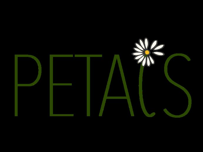 """PETALS logo where the """"L"""" in petals is a daisy with some petals blowing away."""