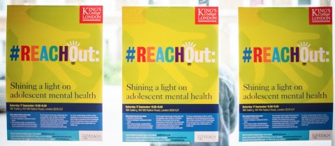 Photo of three REACH posters side by side