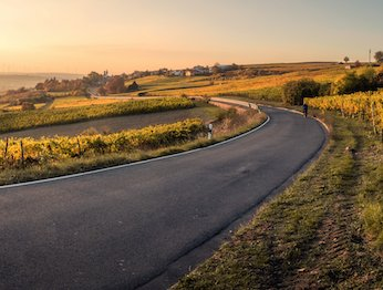 picture of road curving round green landscape at sunrise